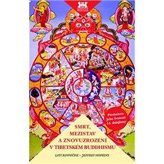 Smrt, mezistav a znovuzrození v tibetském buddhismu: Průvodce dějinami buddhismu a jeho učením - Kniha