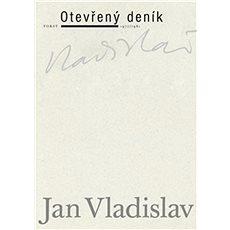 Otevřený deník - Kniha