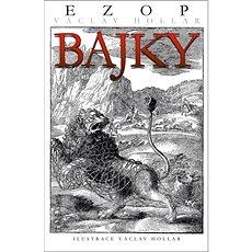 Bajky: Ezop Václav Hollar - Kniha