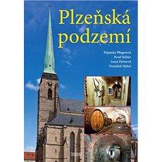 Plzeňská podzemí - Kniha