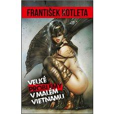 Velké problémy v malém Vietnamu - Kniha