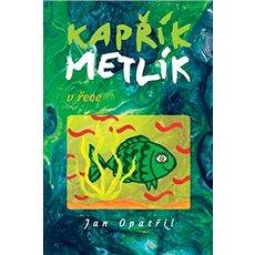 Kapřík Metlík v řece - Kniha