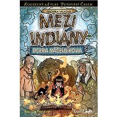 Mezi indiány: Dcera náčelníkova - Kniha