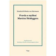 Pravda o myšlení Martina Heideggera - Kniha