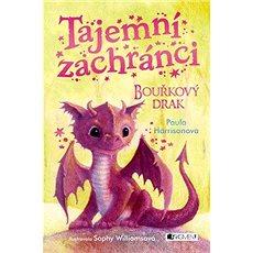 Tajemní zachránci Bouřkový drak - Kniha