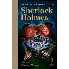 Sherlock Holmes 3: Pes rodu Baskervillovcov - Kniha