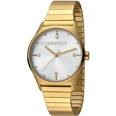 ESPRIT VinRose Silver Gold Matt 2990 - Dámské hodinky