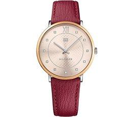 TOMMY HILFIGER Sloan 1781810 - Dámské hodinky