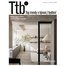 TOP TRENDY V BYDLENÍ  2013 - Elektronický časopis
