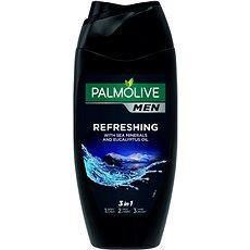 PALMOLIVE Men Refreshing 250 ml - Pánský sprchový gel