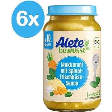 ALETE BIO Zelenina smakaróny a sýrem 6× 220 g - Příkrm