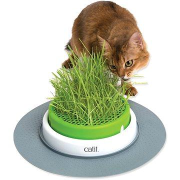 HAGEN Trávník Catit 2.0 - Tráva pro kočky