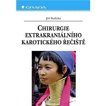 Chirurgie extrakraniálního karotického řečiště - Elektronická kniha