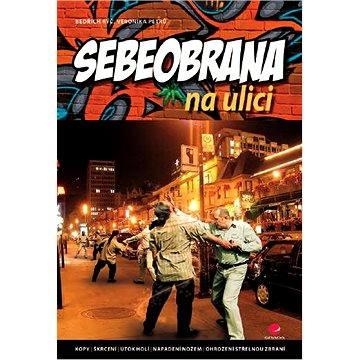 Sebeobrana na ulici - Elektronická kniha