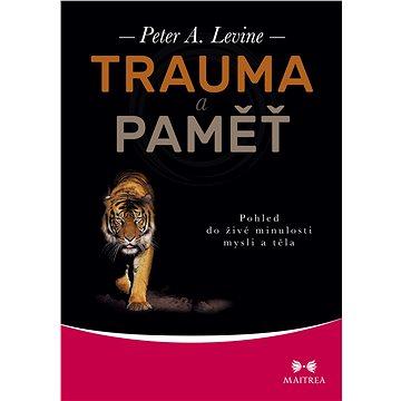 Trauma a paměť - Elektronická kniha