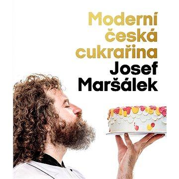 Moderní česká cukrařina - Elektronická kniha