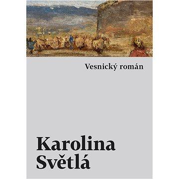 Vesnický román