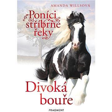Poníci od stříbrné řeky – Divoká bouře - Elektronická kniha