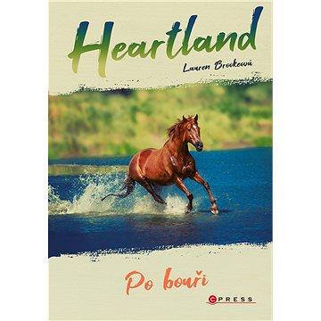 Heartland: Po bouři - Elektronická kniha
