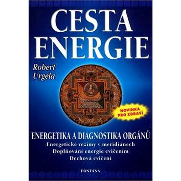 Cesta energie: Energetika a diagnostika orgánů