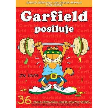Garfield posiluje: č.36