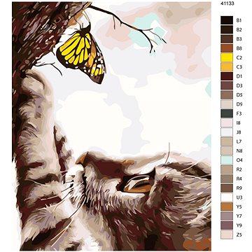 Malování podle čísel - Kočka a žlutý motýl 40x50 cm vypnuté plátno na rám - Malování podle čísel