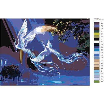 Malování podle čísel - Letící fénix 30x40 cm vypnuté plátno na rám - Malování podle čísel