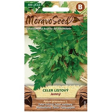 Celer listový JEMNÝ - Semena