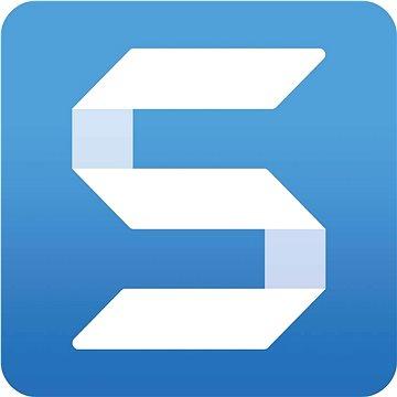 SnagIt 2021, včetně podpory na 12 měsíců (elektronická licence) - Kancelářský software