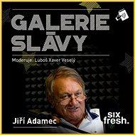 Galerie slávy - Jiří Adamec - Audiokniha MP3