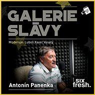 Galerie slávy - Antonín Panenka - Audiokniha MP3