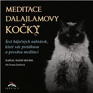 Meditace dalajlamovy kočky - Audiokniha MP3