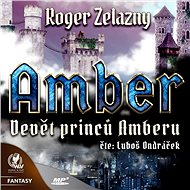 Devět princů Amberu - Audiokniha MP3