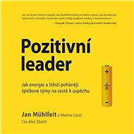 Pozitivní leader - Audiokniha MP3