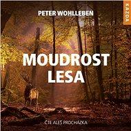 Moudrost lesa - Audiokniha MP3