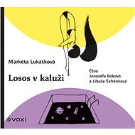 Audiokniha MP3 Losos v kaluži - Audiokniha MP3