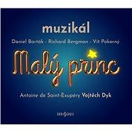 Malý princ - muzikál - Audiokniha MP3