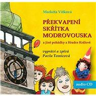 Překvapení skřítka Modrovouska a jiné pohádky z Hradce Králové - Audiokniha MP3