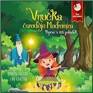 Vnučka čaroděje Modromíra - Poprvé v říši pohádek - Audiokniha MP3