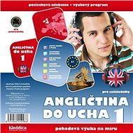 Angličtina do ucha 1 - začátečníci - Audiokniha MP3