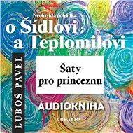 Neobvyklá pohádka o Šídlovi a Teplomilovi – šaty pro princeznu - Audiokniha MP3
