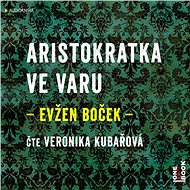 Aristokratka ve varu - Audiokniha MP3