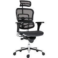 ANTARES Ergohuman mesh černá - Kancelářská židle