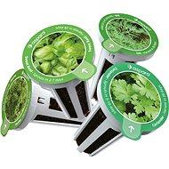 Aspara Seed Kit Výběr Bylinek - Sazenice