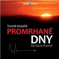 Audiokniha MP3 Promrhané dny - Audiokniha MP3