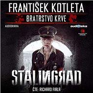 Stalingrad - Audiokniha MP3