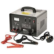 RING Professional charger RCBT30 with starter, 30A, 12V, 24V - Car Battery Charger