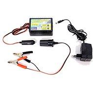 COMPASS Nabíječka akumulátoru udržovací 10-250Ah - Nabíječka autobaterií