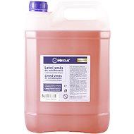 MEYLE Summer cherry sprayers 5 L - Windshield Wiper Fluid
