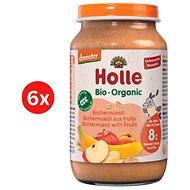 HOLLE BIO ovocné musli 6× 220 g - Příkrm